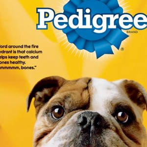 pedigree-dogfood